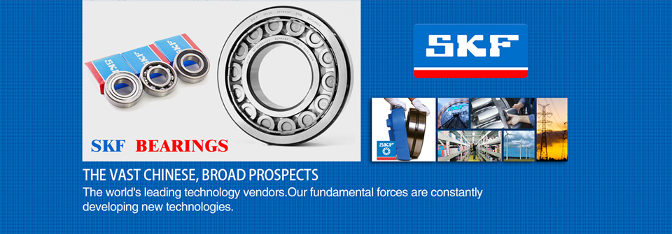 SKF bearing application